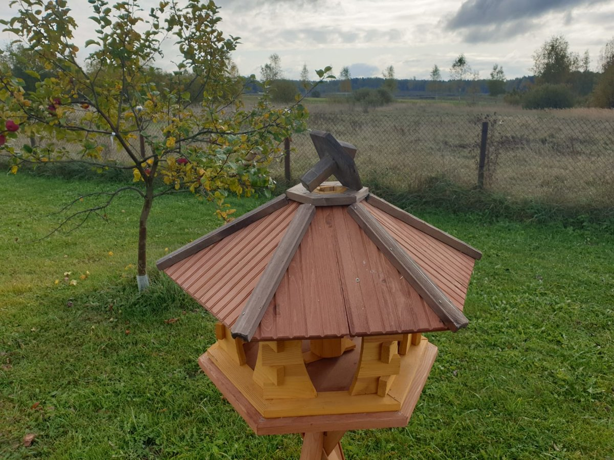 Putnu Barotava